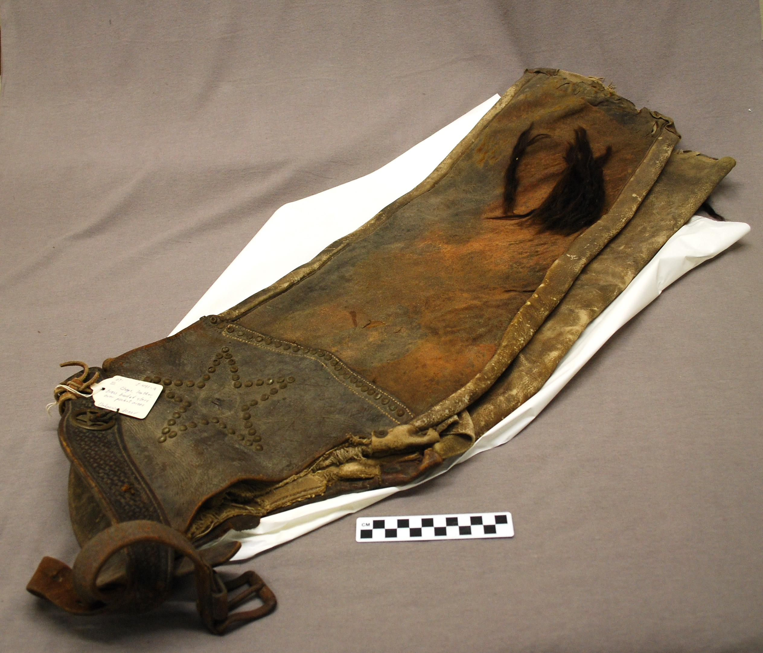 Object: Chaps (Leather chaps) | UTSA Institute Of Texan Cultures