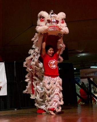 Asian Festival - UTSA Institute of Texan Cultures