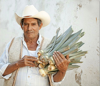 Opening Reception: Aliento a Tequila