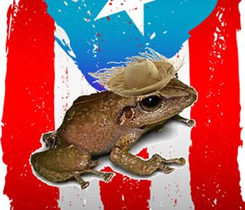 Puerto Rican Family Fun Day